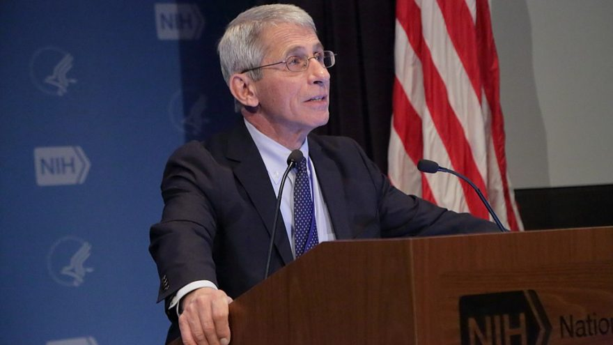 https://commons.wikimedia.org/wiki/File:Anthony_S._Fauci,_M.D.,_NIAID_Director_(49673229463).jpg